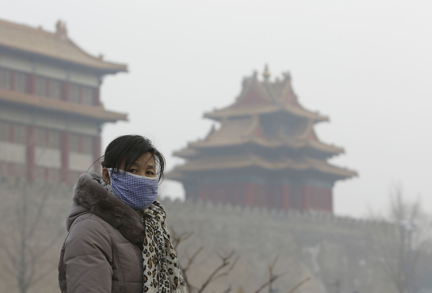 Photo of هواء نقي مُعلب يباع في الصين