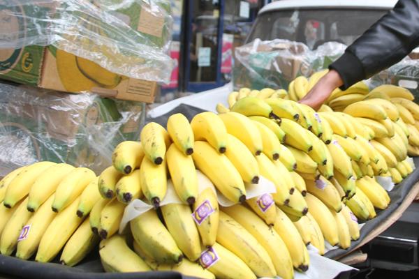 صورة الجمارك: السماح في استيراد الموز يكلف 70 مليون دولار