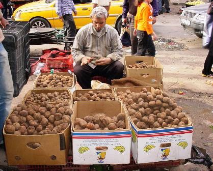 صورة الكمأة في حلب من ٢٠٠٠٠ إلى ١٥٠٠ ليرة!