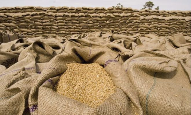 Photo of ثلاثة عقود لاستيراد 600 ألف طن من القمح