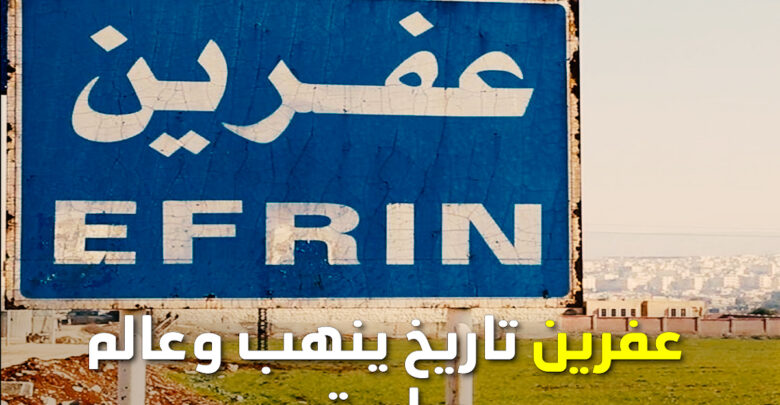 Photo of عفرين تاريخ ينهب وعالم صامت