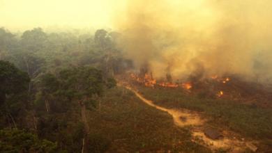 صورة رئة العالم تحترق .. 2500 حريق جديد بالأمازون والعالم في خطر