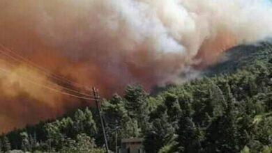 Photo of النيران تلتهم أحراج مصياف.. وعناصر الإطفاء مستنفرة على مدار الساعة
