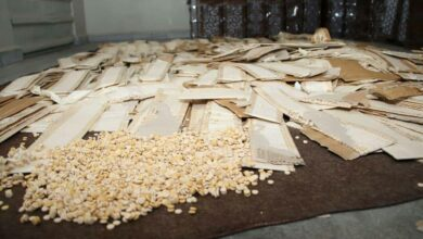 Photo of مخزنة في كراتين.. مصادرة أكثر من نصف مليون حبة كبتاغون معدة للتهريب خارج سورية