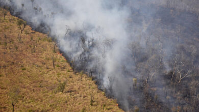 صورة الأمطار تساعد في إخماد حرائق غابات الأمازون المستعرة منذ شهرين