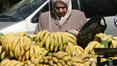"Photo of ""الاقتصاد"": السماح باستيراد الموز اللبناني قيد الدراسة"