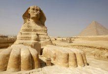 """Photo of مصر.. اكتشاف""""حيوان غريب"""" يمهد لحل لغز """"أبو الهول"""""""