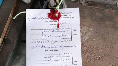 "Photo of ""التموين"" تنظم عشرات الضبوط بحق المخالفين في عدة محافظات"