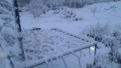 صورة بالصور .. ٣٠ سم سماكة الثلوج في حضر بريف القنيطرة الشمالي وهطولات مطرية في محافظات عدة