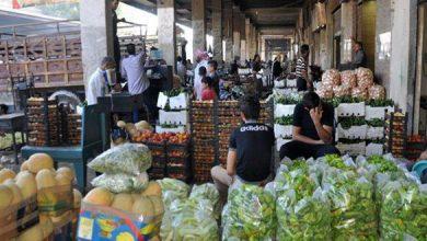 صورة مليون كيلو خضر تدخل سوق الهال في الزبلطاني يومياً ستنخفض 90 بالمئة في العيد