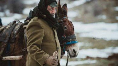 Photo of أيمن زيدان يبحث عن حياة أفضل
