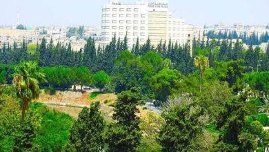 Photo of 750 عاملاً تضرروا نتيجة إغلاق المنشآت السياحية في حماة