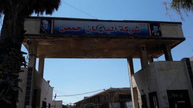 """Photo of الحماد لـ""""الوطن"""": ارتفاع سعر الحليب الخام بسبب التهريب والأعلاف"""
