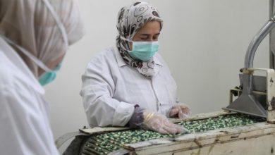 صورة مدير «تاميكو» لـ«الوطن»: شحنات أدوية إلى جميع مستودعات النقابة في المحافظات من دون زيادة أسعار