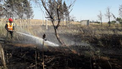 Photo of حريق كبير على امتداد 40 دونم أشجار بريف حمص