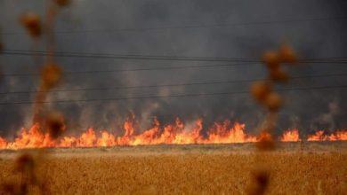 Photo of الحرائق المفتعلة في محاصيل الحسكة تحرم قرى كثيرة من الكهرباء
