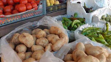 صورة رئيس اتحاد فلاحي طرطوس: مبادرة بيع الخضر من المنتج إلى المستهلك توقفت.. ولا يمكن تطبيقها على الفواكه