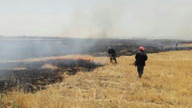 Photo of إخماد 12 حريقاً بينها محاصيل قمح على مساحة 10 دونمات وحصاد على امتداد 18 دونماً