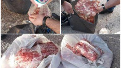 Photo of حماية المستهلك تضبط لحم فروج مجمداً مجهول المصدر في السويداء