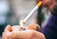 Photo of دراسة لرفع أسعار شراء التبغ من المزارعين… فهل ترتفع أسعار الدخان الوطني؟