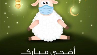 Photo of الكورونا حاضرة حتى في رسائل وتهنئات العيد