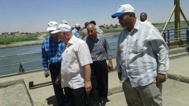 صورة 110 آلاف دونم «استصلاح الأراضي» تعيد استثمارها في الرقة