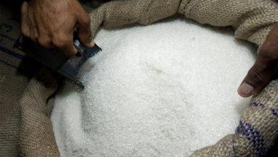 Photo of مدير مؤسسة السكر لـ«الوطن»: لا نية حكومية لإعفاء استيراد السكر الخامي من الرسوم والضرائب