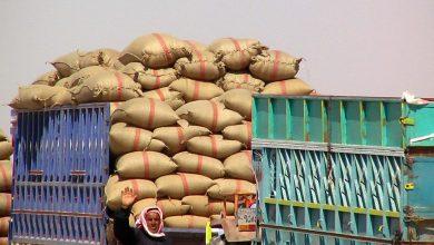 Photo of «إكثار البذار» تشتري قمحاً لإنتاج 1.4 مليون طن