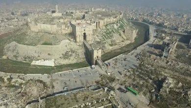 Photo of حلب تطلق حملة تعقيم وتنظيم ورش مبيدات شاملة لشوارعها وأحيائها