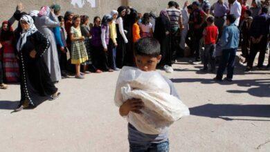 صورة أزمة خبز في حماة.. مدير مطحنة سلمية: بسبب تأخر سيارات القمح