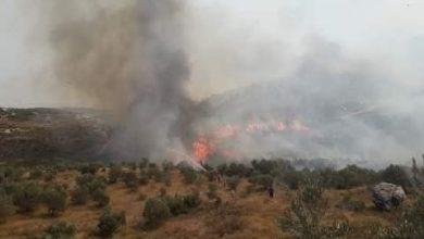 صورة 104 فلاحين تضرروا من حرائق وادي النضارة بريف حمص الغربي
