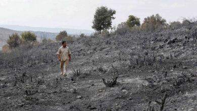 صورة فلاحو طرطوس المنكوبون يعودون إلى أراضيهم المحروقة.. واتحادهم يحدد المطلوب لمساعدتهم