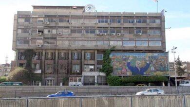 صورة رئيس اتحاد الفلاحين لـ«الوطن»: 5 آلاف طن قطن فقط تم تسويقها لتاريخه