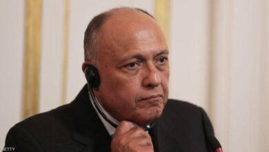 صورة مصر: حل الأزمة في سورية ينطلق من الحفاظ على وحدتها واستقلال قرارها