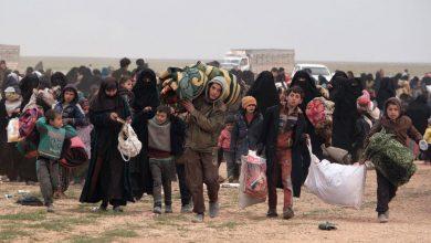 صورة مصادر محلية: أسر سورية تستعد لمغادرة «مخيم الهول»