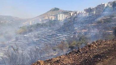 صورة محافظ طرطوس لـ«الوطن»: 3972 أسرة تضررت بشكل مباشر والحرائق طالت أكثر من نصف مليون شجرة