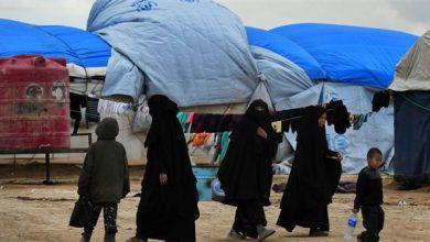 """صورة مصدر في """"الهلال الأحمر"""" لـ """"الوطن"""": نقل أربعة أطفال ألبان وامرأة من """"مخيم الهول"""" إلى دمشق وإعادتهم إلى بلادهم"""