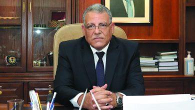 صورة وزير الزراعة يشكل 4 مجالس استشارية شاملة للقطاعات