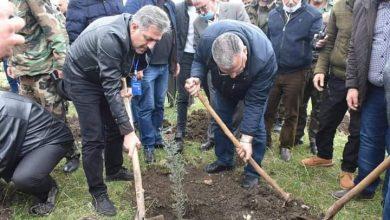صورة وزير الزراعة: 5 محاور و7 ملايين غرسة للحملة الوطنية للتشجير