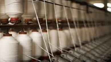 صورة 6 مليارات ليرة مبيعات الخيوط القطنية بحماة