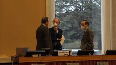 صورة في اجتماعات اليوم الثاني للجنة الدستورية.. الوفد الوطني يركز على الملف الإنساني ورفع العقوبات