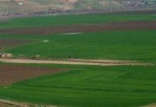 صورة استمرار هطل الأمطار على مختلف مناطق الاستقرار الزراعي بالحسكة