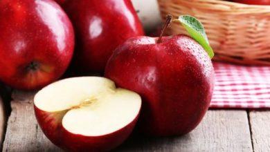 صورة منها زيادة الوزن.. تعرف على أضرار الإفراط فى تناول التفاح
