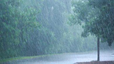 صورة صلنفة تسجل أعلى معدل مطري خلال العاصفة الحالية في اللاذقية