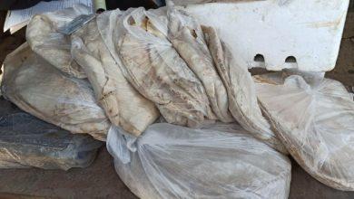 صورة رقابة دير الزور تسجل 10 ضبوط من الاسواق