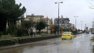 صورة أمطار في حماة أغزرها 70 مم بمصياف