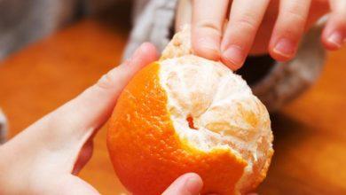 صورة 4مسافرين يتناولون 30 كغ من البرتقال قبل انطلاق رحلتهم!