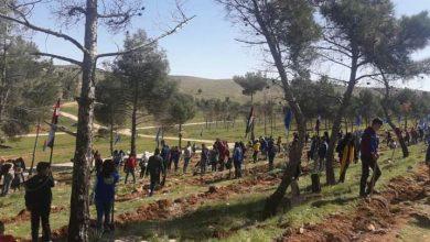 صورة حملة تشجير لزراعة ألف غرسة حراجية في جبال الشومرية بريف حمص