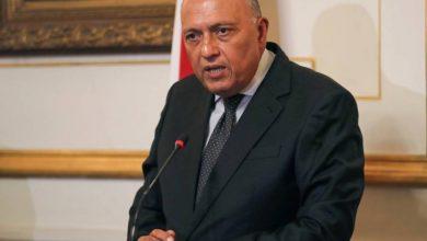 صورة وزير الخارجية المصري: عودة سورية إلى الحاضنة العربية كدولة فاعلة أمر حيوي لصيانة الأمن القومي