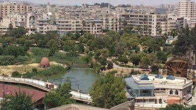 صورة جريمة مروعة تهز مدينة حماة.. ابن يقتل أمه نحراً بالسكين